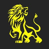 Lion SEO