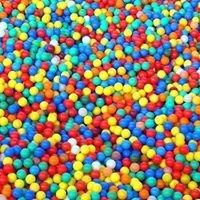 The Bounce Spot
