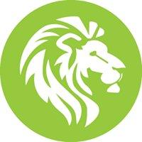 Lionshead Energy - Solar & Energy Efficiency