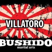 Villatoro Bushido Martial Arts