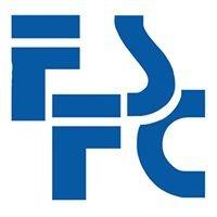 First Standard Finance Corporation