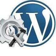 Web N App Developer