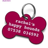 Rachel's Happy Hounds Dog Walking & Secure Exercise Field