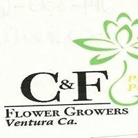 C & F Flower Growers