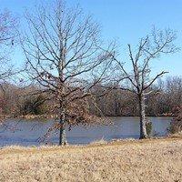 Shelby Farms Park Conserv
