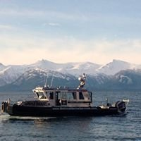 Melino's Marine Services