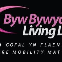 Byw Bywyd - Living Life Cyf