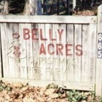 Belly Acres Christmas Tree Farm