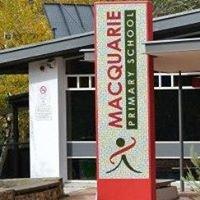 Macquarie Primary P&C