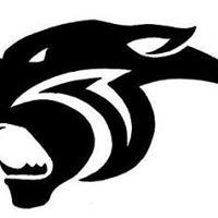 Punjab Panthers Hockey Club