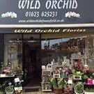 Wild Orchid Florist