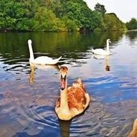 Leytonstone Lake