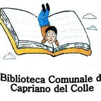 Biblioteca Capriano