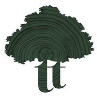 Thinktrees Ltd