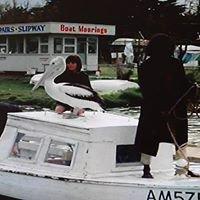 The Captain Sturt Marina and Slipway