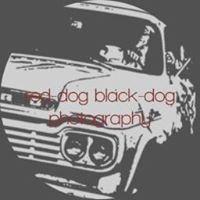 Red-dog Black-dog Photography