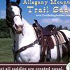 Allegany Mountain Trail saddles