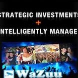 Strategic Global Investments