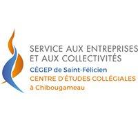 Service aux Entreprises et aux Collectivités