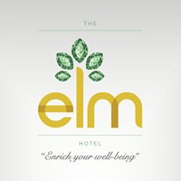 The Elm Hotel Chicago