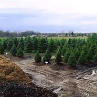 Mayhew's Tree Farm & Nursery