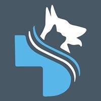 Summerhill Veterinary Hospital Ennis
