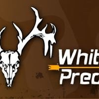 Whitetail Predator