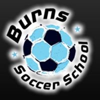 Burns Skills School Ltd