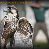 Adare Country Pursuits