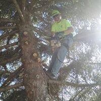 Lumber Jack & Jill LLC
