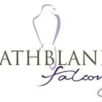 Strathblane Falconry
