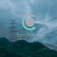 Birdiecar - Electric Solutions