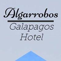 Galapagos Hostel