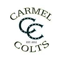 Carmel Elementary PTO