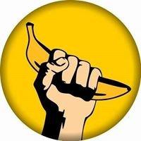 Banana, Canela e Design