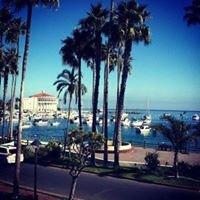Segway Tours Of Catalina