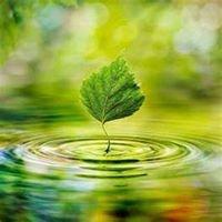 Aspen Environmental Consulting, LLC