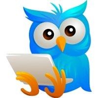 Blue Owl Web Design