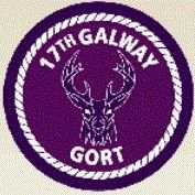 Gort Scouts