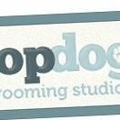 Top Dog Grooming Studios