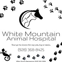 White Mountain Animal Hospital