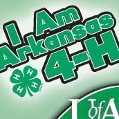 Clay County 4-H, Arkansas 4-H