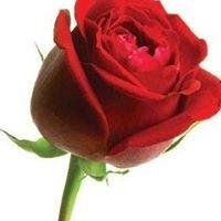 Rose Coaching