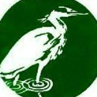 LBCV (Lea Bridge Conservation Volunteers)