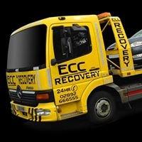 ECC Recovery & Auto Assist