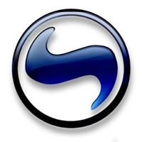 Salomgrup.com