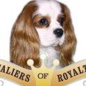 Cavaliers of Royalty
