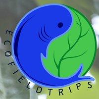 Ecofieldtrips Pte Ltd
