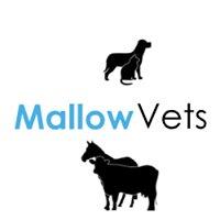 Mallow Vets