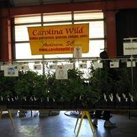 Carolina Wild Native Plant Nursery